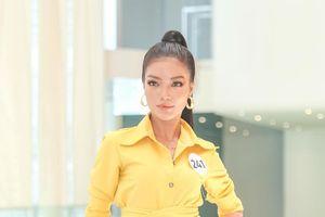 Khánh Vân - Bích Tuyền - Hương Ly - Nguyễn Thị Thành đọ sắc tại buổi sơ khảo Miss Universe Vietnam 2019