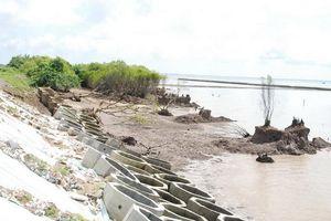 Tiền Giang: Sạt lở bờ biển, bờ sông có xu hướng gia tăng