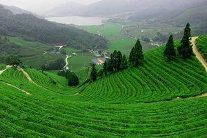 Không thể bỏ qua những điểm du lịch này khi đến Thái Nguyên