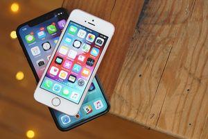 Apple: 'Google hù dọa về lỗ hổng iPhone, làm người dùng sợ hãi'