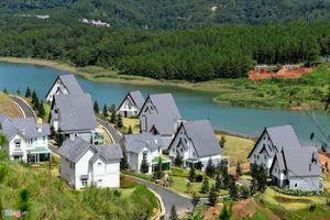 Lâm Đồng: Nhiều doanh nghiệp 'băm nát' hồ Tuyền Lâm