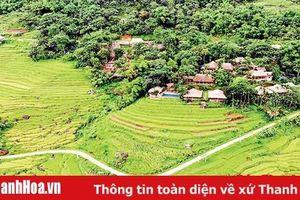 Huyện Bá Thước: Cải thiện mạnh mẽ môi trường đầu tư kinh doanh