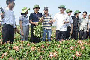 Nét mới trong công tác xây dựng Đảng ở Quảng Trị