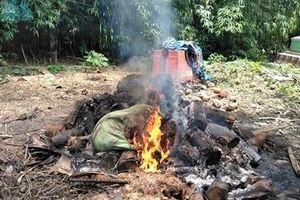 Đốt heo chết tại bãi rác cạnh cổng Đình Thần Cửu Viễn gây ô nhiễm