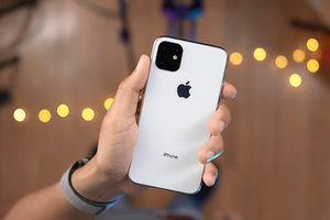 3 camera, cấu hình mạnh, sạc ngược - iPhone 2019 có gì đáng chờ đợi?