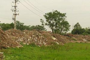 Xã Bích Hòa, huyện Thanh Oai: Gia tăng vi phạm đất nông nghiệp
