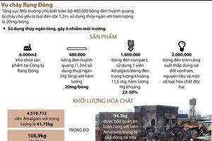 480.000 bóng đèn huỳnh quang của Rạng Đông có thủy ngân