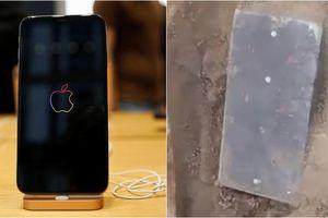 Tìm thấy vật thể giống iPhone trong mộ cổ hơn 2.000 tuổi