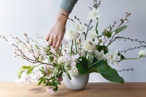 Nếu hay cắm hoa trong nhà, bạn sẽ phải suy nghĩ lại sau khi đọc bài này