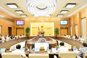 Ủy ban Thường vụ Quốc hội cho ý kiến về việc giải trình, tiếp thu, chỉnh lý dự án Luật Chứng khoán (sửa đổi)