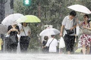 Bão Faxai tấn công Tokyo: 1 người chết, hơn 30 người bị thương