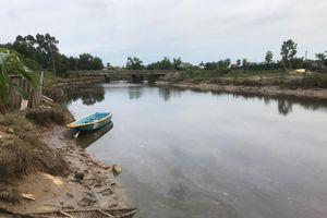 Hoảng hồn vì cá sấu bất ngờ xuất hiện dưới sông