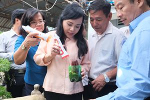 Bộ trưởng Nguyễn Thị Kim Tiến trực tiếp kiểm tra chống dịch sốt xuất huyết