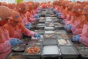 Hàng Việt trước cơ hội bứt phá xuất khẩu vào Mỹ