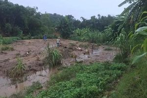 Tuyên Quang: 3 người chết do mưa lũ, nhiều tài sản bị mất trắng
