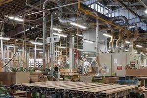 Chủ tịch HAWA: Công nghệ chế biến gỗ đã 'chạm' đến trí tuệ nhân tạo, điện toán đám mây