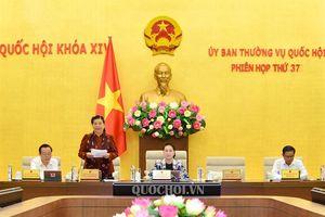Trình Ủy ban Thường vụ Quốc hội cho ý kiến về dự án Luật Thanh niên (sửa đổi)