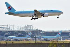 Nhật-Hàn căng thẳng thương mại, giá vé máy bay giảm sốc chưa từng thấy