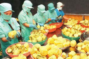Phát triển công nghiệp chế biến: Nâng sức cạnh tranh cho nông sản xuất khẩu