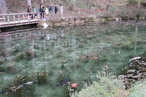 Hồ nước đẹp như tranh sơn dầu hớp hồn du khách đến Nhật Bản