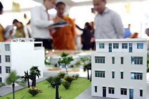 Sự trùng hợp bất ngờ của 3 DN BĐS 'lạ': Hoa Phượng, Anh Đào, Lan Việt