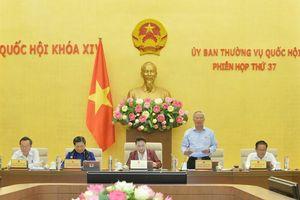 Ủy ban Thường vụ Quốc hội thống nhất thành lập một số đơn vị hành chính mới