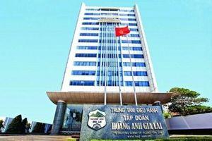Cặp đôi cổ phiếu HAG – HNG tiếp tục bị đưa vào diện cảnh báo