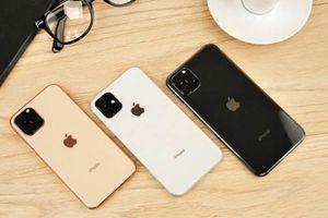 iPhone 11 về Việt Nam có giá bán bao nhiêu?