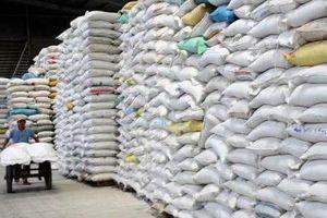 Xuất khẩu gạo 'bốc hơi' 300 triệu USD