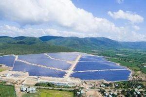 Dồn lực đầu tư điện mặt trời, Điện Gia Lai tăng gấp đôi đòn bẩy nợ