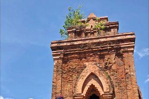 Đền tháp văn hóa Chăm - giá trị ngoại hạng của một di tích