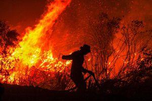 Indonesia cầu mưa chữa cháy rừng
