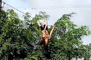 Đắk Lắk: Thót tim cảnh người phụ nữ leo cột điện, đu dây