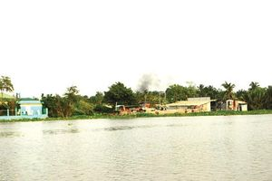 Cấp bách bảo vệ tài nguyên nước