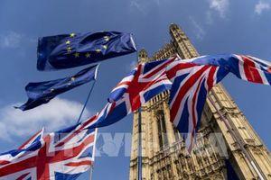 Chính phủ Anh thừa nhận chưa chuẩn bị đầy đủ cho kịch bản Brexit 'cứng'