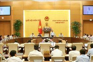 Bỏ quy định về bổ sung nhiệm vụ giám định tư pháp cho Kiểm toán nhà nước
