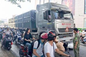 Đồng Nai: Va chạm với xe container, nữ sinh tử vong trên đường đi học về