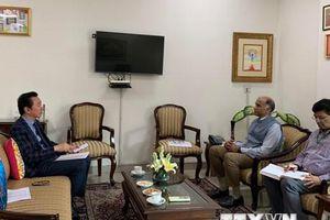 Tích cực hỗ trợ xuất khẩu hương nhang vào thị trường Ấn Độ