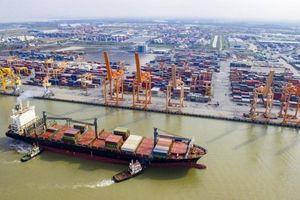 Điều chỉnh quy hoạch chi tiết cảng cửa ngõ Lạch Huyện