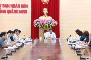 Ban Cán sự Đảng - Thường trực UBND tỉnh cho ý kiến về một số nội dung quan trọng