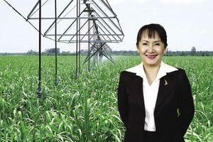 'Nữ hoàng mía đường' dự chi hơn 500 tỷ mua 35 triệu cổ phiếu SBT