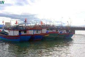 Ngư dân gặp khó vì nhiều tàu cá nằm bờ do không đủ tiêu chuẩn quy định
