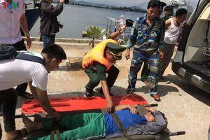 1 ngư dân Đà Nẵng tử vong trên biển nghi do ngộ độc cá nóc