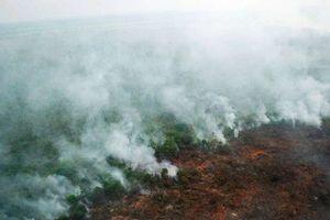 Nhiều nước Đông Nam Á chìm trong khói bụi - Tranh cãi ngoại giao nổ ra