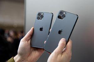 Mở đặt trước, doanh số iPhone 11 ảm đạm