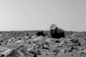 Hình ảnh khỉ và lạc đà xuất hiện trên sao Hỏa gây sốc