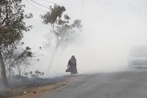 Người dân Đông Nam Á khốn khổ vì cháy rừng