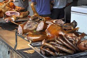 TP.HCM kêu gọi người dân bỏ thói quen ăn thịt chó
