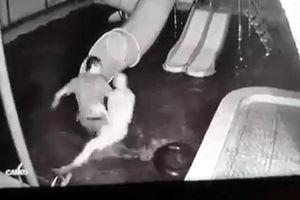 Người vợ bị dìm xuống nước: 10 năm qua, mỗi lần say Linh lại đánh tôi
