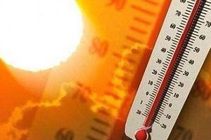 Những biến chứng thường gặp khi bị sốc nhiệt